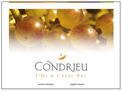 Condrieu, l'or à l'état pur - Vin de la vallée du rhône - AOC Condrieu | exyod | Scoop.it