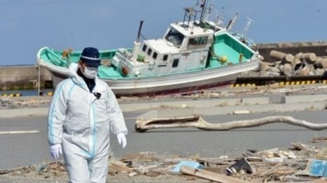 South Korea bans 'unacceptable' #Fukushima fish imports #radiation | Messenger for mother Earth | Scoop.it