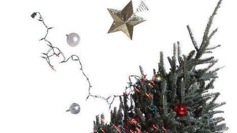 Poetry Pairing | 'Christmas Tree Lots' | Christmas Readings | Scoop.it