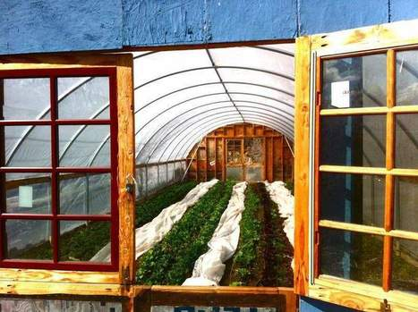 Reno farm wins grant as USDA focuses on smaller operations | Yellow Boat Social Entrepreneurism | Scoop.it