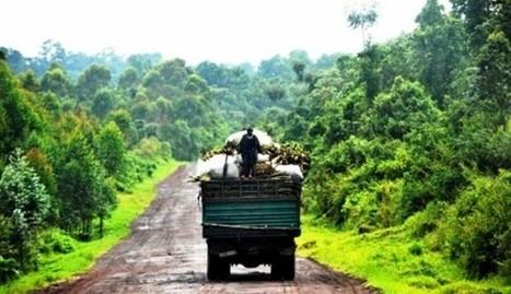 Lancement à Kinshasa du Projet de gestion améliorée des paysages forestier | CONGOPOSITIF | Scoop.it