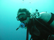 Musings from the Crow's Nest: Diving in the Red Sea | ScubaObsessed | Scoop.it
