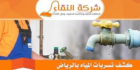 كشف تسربات المياه مع الاصلاح | 0503021172 | شركة النقاء | شركة النقاء للخدمات المنزلية تنظيف منازل - مكافحة حشرات - نقل اثاث - كشف تسربات | Scoop.it