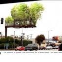 Transformer des panneaux publicitaires en jardins suspendus | Architecture, Urbanisme | Scoop.it