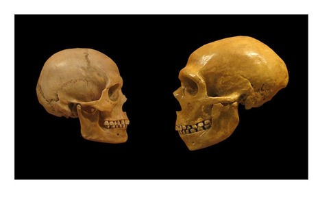 Study confirms that Neanderthals and humans got it on | Paganism | Scoop.it