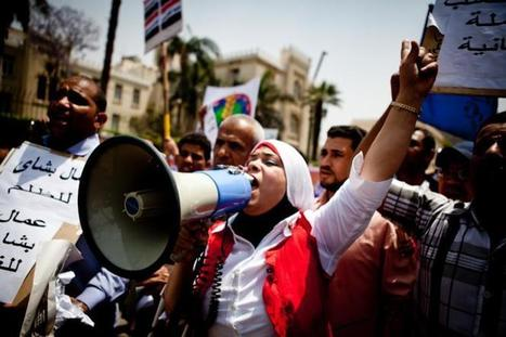 Cement company workers decry dog attack   Égypt-actus   Scoop.it