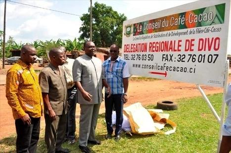 Le conseil du café-cacao initie une tournée de sensibilisation sur la ... - Abidjan.net | Diprofav cooperative agricole | Scoop.it