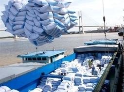Vietnam-Afrique : des potentiels de coopération économique élevés | Toute l'actualité économique africaine en continu | Scoop.it