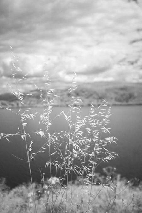 Fuji X100 Infrared | Konstantinos Besios Blog | Fuji X-E1 and X100(S) | Scoop.it