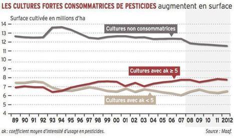 L'usage des pesticides en agriculture ne diminue pas | VENDRESONBLE | Scoop.it