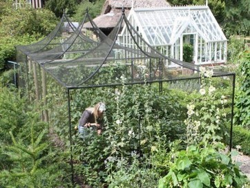 Fruit Cages - Garden Supplies by Harrod Horticultural | Shopping | Scoop.it