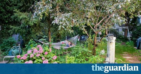 In New York City's Lower East Side, gardening is a political act of resistance | jardins partagés | Scoop.it