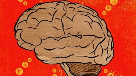 Writing and speaking come from different parts of the brain, study shows | Cognitive Psychology. Cognitive and behavioural Neuroscience | Scoop.it