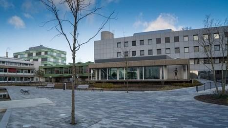 Nieuwe burgemeester van Emmen wordt donderdag voorgedragen | Drenthe | Scoop.it