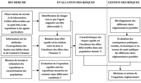 Principe de précaution et évaluation des risques : la nouvelle doctrine de sécurité sanitaire - Page 4 | La mesure | Scoop.it