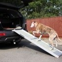 Dog Ramps For Sick Dogs | Dog Training | Scoop.it