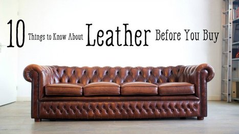 Leather Furniture Guide: Top Grain to Bonded Leather | Franchise Business Opportunities | Scoop.it