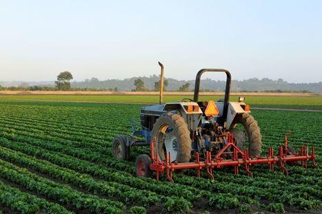 L'agro-écologie commence à séduire la nouvelle génération d'agriculteurs | Biodiversité & RSE | Scoop.it