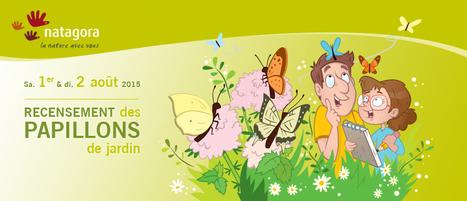 Recensement des papillons de jardin : Natagora - association de protection de la nature | Sciences participatives, pratiques collaboratives | Scoop.it