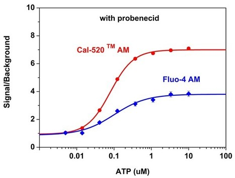 Cal-520™ Calcium Indicators, the Best 488 nm-Excitable Green Fluorescent Calcium Indicators with The Highest Signal to Background Ratio | physiological probes and assays | Scoop.it