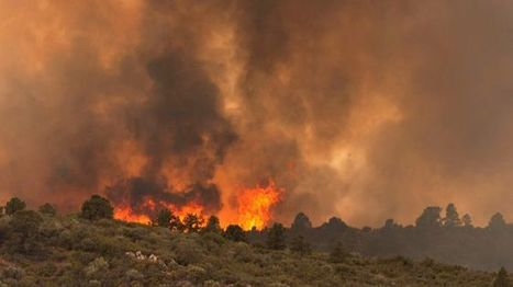 19 firefighters confirmed dead fighting Arizona blaze - Fox News | important stuff | Scoop.it