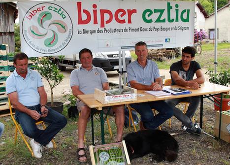 Label rouge pour le piment doux | BABinfo Pays Basque | Scoop.it