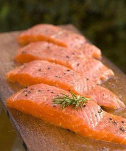 Approval for gene-modified salmon spawns controversy - environment - 28 December 2012 - New Scientist | Teacher Tools and Tips | Scoop.it