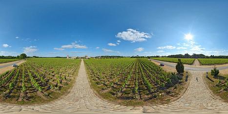 Vignoble du château Smith-Haut-Lafitte à Martillac - France par Pascal Moulin Photographe - Panorama 360 x 180° au mât télescopique (hauteur 5 mètres) | moulin360panoramic | Scoop.it