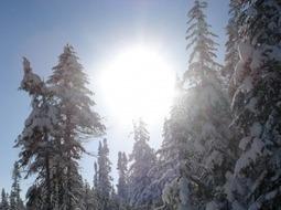 La ville de Québec accueillera la troisième édition du Sommet de l ...   Élément terre   Scoop.it