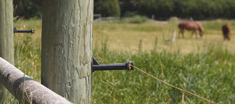 Field Guardian - Electric Fence | Electric Fence For Horse - News - Bubblews | Field Guardian - Electric Fence | Scoop.it