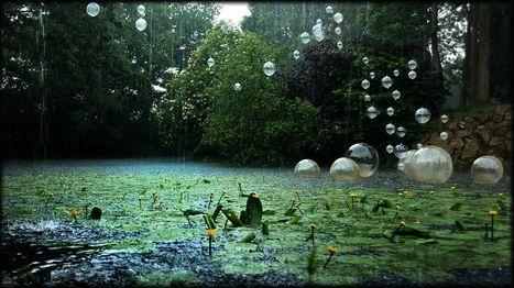 Étangs d'art : biennale d'art dans la nature | L'art contemporain exposé en milieu rural | Scoop.it