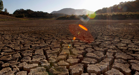 Soil Chemistry in Drylands to Change as Climate Become More Arid - Nature World News | Extreme Environments in the news | Scoop.it