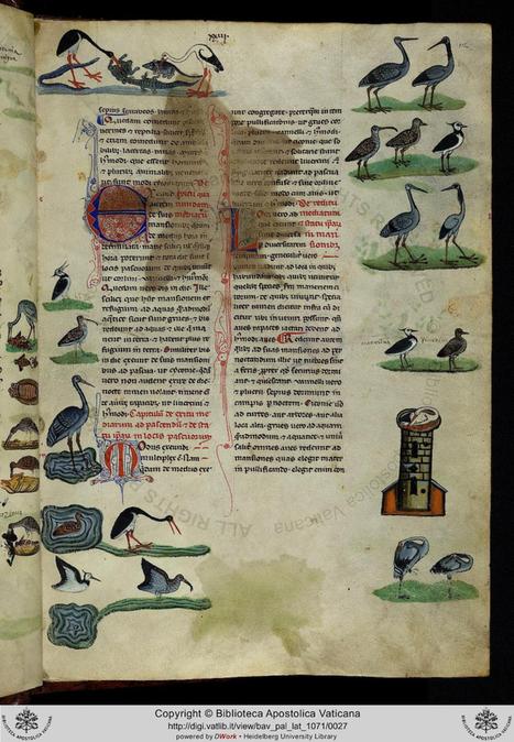 Stupendous 13th century illustrated manuscript | L'actu culturelle | Scoop.it