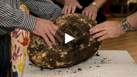 Une énorme motte de beurre vieille de 2000 ans découverte en Irlande | Histoire et archéologie des Celtes, Germains et peuples du Nord | Scoop.it