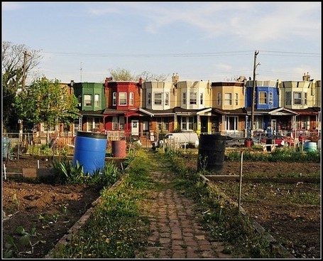 The Urban Garden as Crime Fighter... | Criminology and Economic Theory | Scoop.it