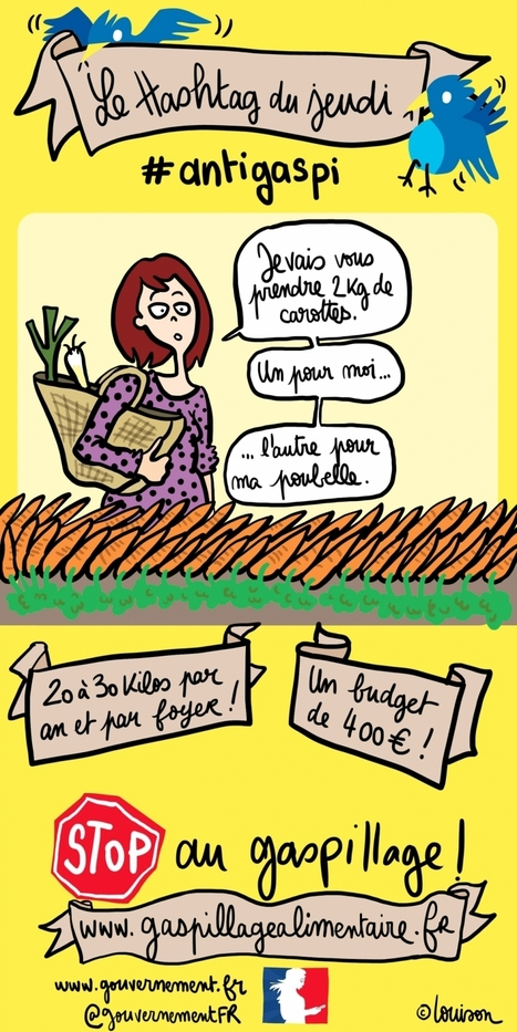 le gaspillage alimentaire | Las TIC en el aula de ELE | Scoop.it