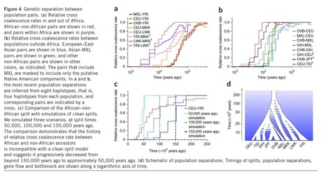 Linear Population Model: Inferring human population size and ... | Population & Medical Genomics | Scoop.it