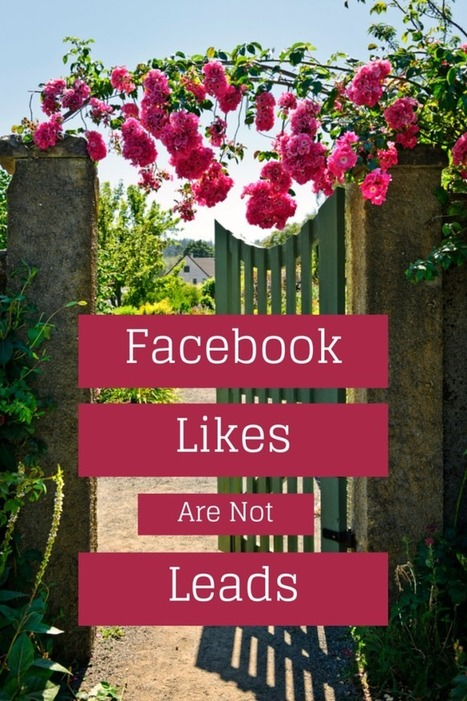 Facebook Likes Are Not Leads | Nonprofits & Social Media | Scoop.it