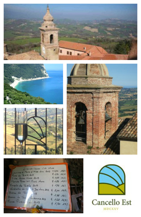 Le Marche: the underestimated wine region of Italy   Wines and People   Scoop.it