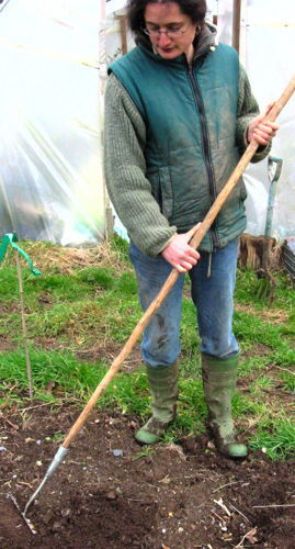 Real Seeds Newsletter 2010 | Allotment gardening | Scoop.it