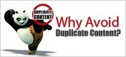 Duplicate Content Detection Tools - SEO | iRISEmedia.com | Digital Marketing | Scoop.it