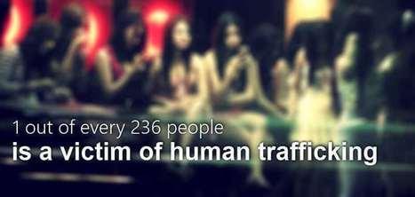 Human Trafficking Statistics - Stone in Shoe | Human Trafficking | Scoop.it