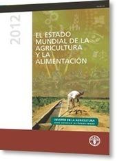 FAO: El estado mundial de la agricultura y la alimentación 2012 | Nuevas Geografías | Scoop.it