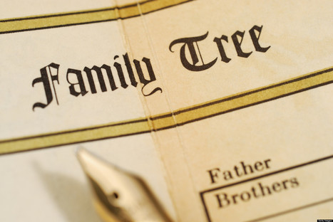 Seven Solid Rules for Genealogy and Family History | Libraries & Archives 101 | Scoop.it