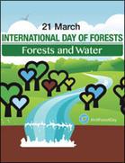 International Day of Forests 2016 | Comunicación, Conocimiento y Cultura del Agua | Scoop.it
