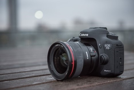 Canon EOS 7D Mark II Review: Digital Photography Review | Photography Gear News | Scoop.it