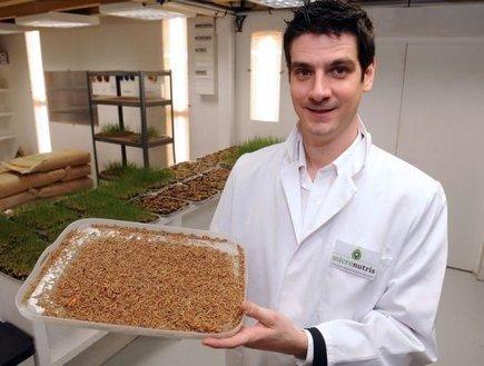 Cédric Auriol, gérant de Micronutris, le 27 décembre 2012 à Saint-Orens-de-Gameville_3   Entomophagy: Edible Insects and the Future of Food   Scoop.it
