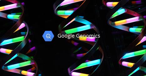 Google lance le traitement de votre ADN dans son cloud | toute l'info sur Google | Scoop.it