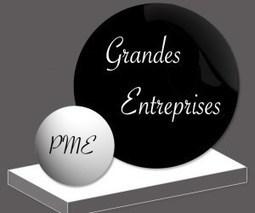 La différence de stratégie de communication entre une grande entreprise et une TPE / PME | Des Mentors Pour Entreprendre - Pour les entrepreneurs qui veulent marquer leurs différences | MARKETING DES TPE | Scoop.it