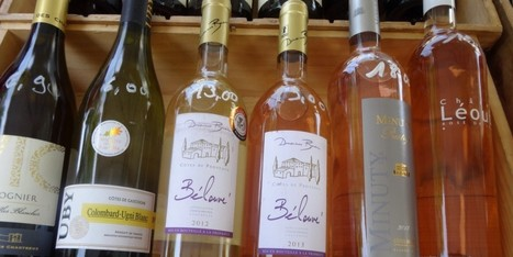 "Rosé: The New ""It"" Wine 